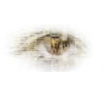 Digital Humanities Logo